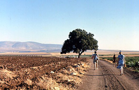 route-galilee.jpg